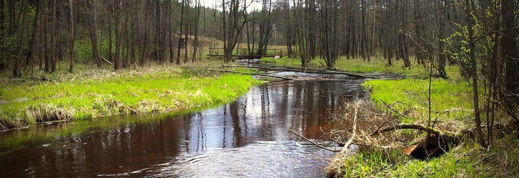 Grūdos upė