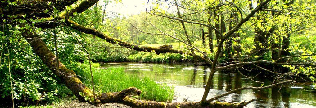 Versekos upė